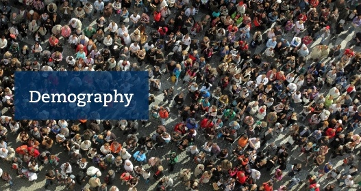 Big crowd seen from above with the text Demography. Photo: Mostphotos